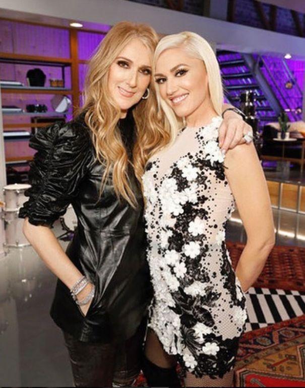 Nobody looks amazing next to Gwen Stefani.
