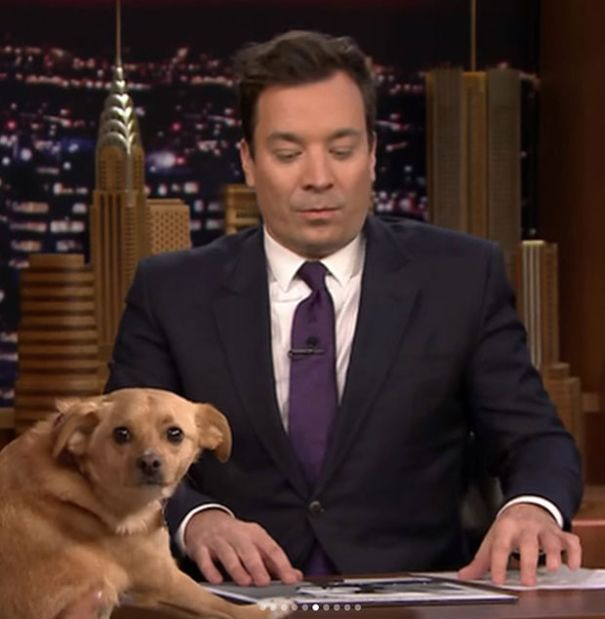 When Toulouse was on Fallon!