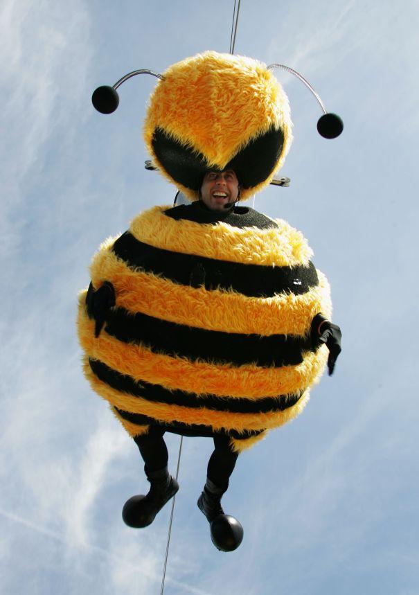 'Bee Movie' Buzz, 2007