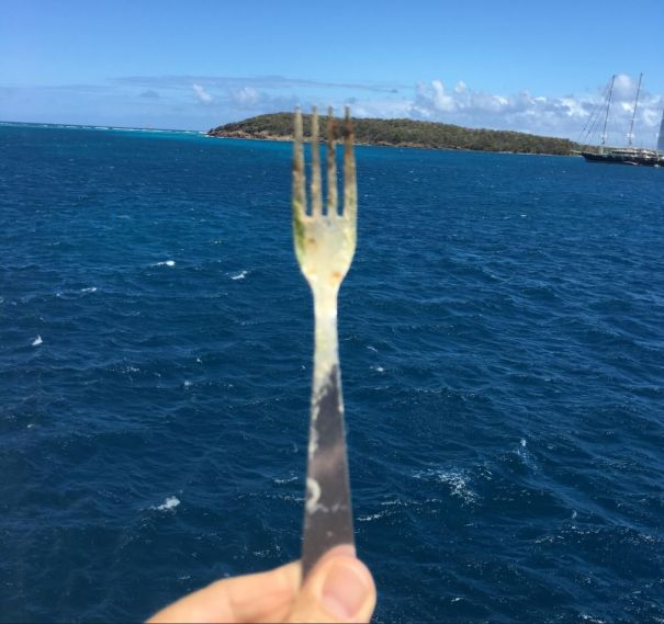 A Fork In The Road... Or Sea