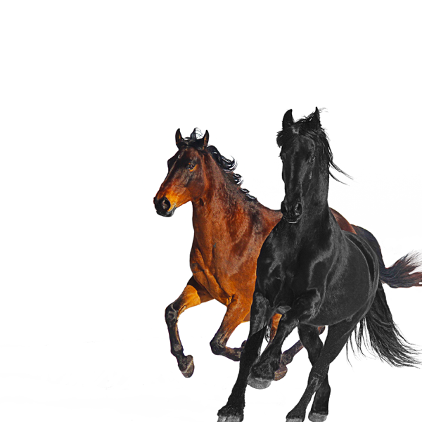 'Old Town Road' (Remix) - Lil Nas X ft. Billy Ray Cyrus