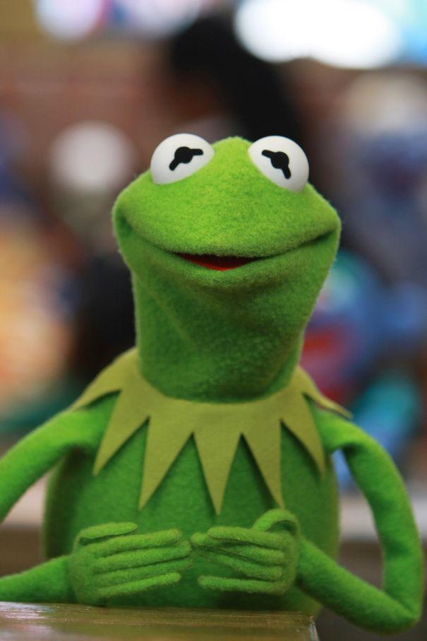 Kermit Laments Being Green