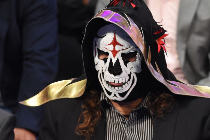 La Parka is seen  during World Day Against Cancer at city hall on Feb. 8, 2017 in Mexico City, Mexico.
