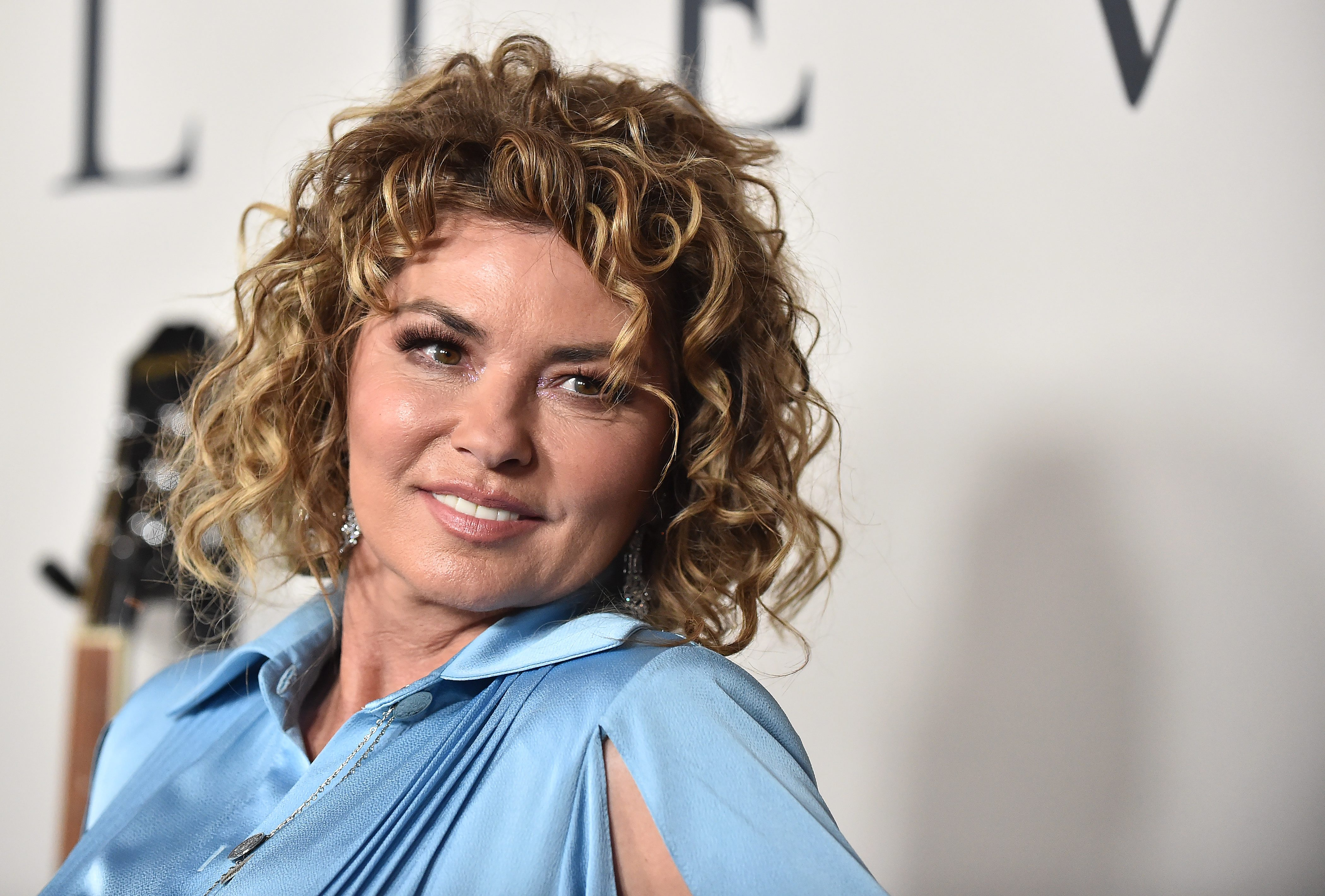 Despite Her Lyric In That Don T Impress Me Much Shania Twain Admits She S Very Impressed By Brad Pitt Etcanada Com
