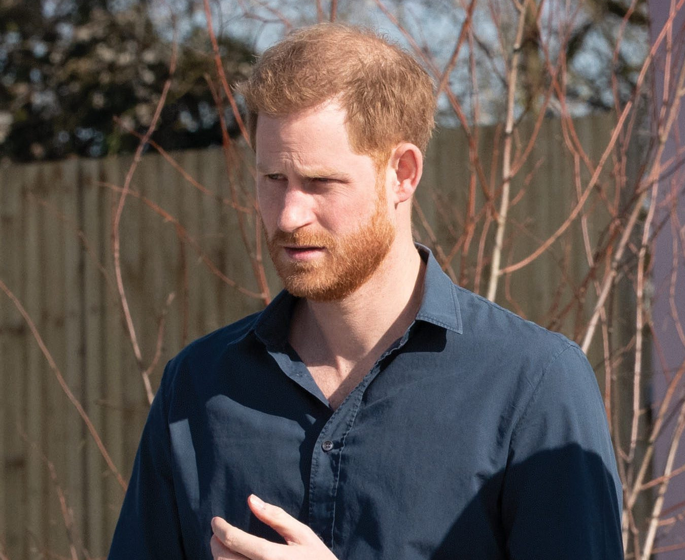 Prince Harry Pens Emotional Letter Thanking Landmine Charity For All Their Hard Work Amid Coronavirus Crisis