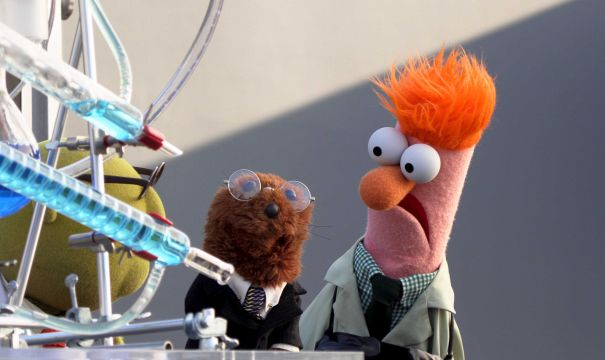 'Muppets Now' - Series Premiere