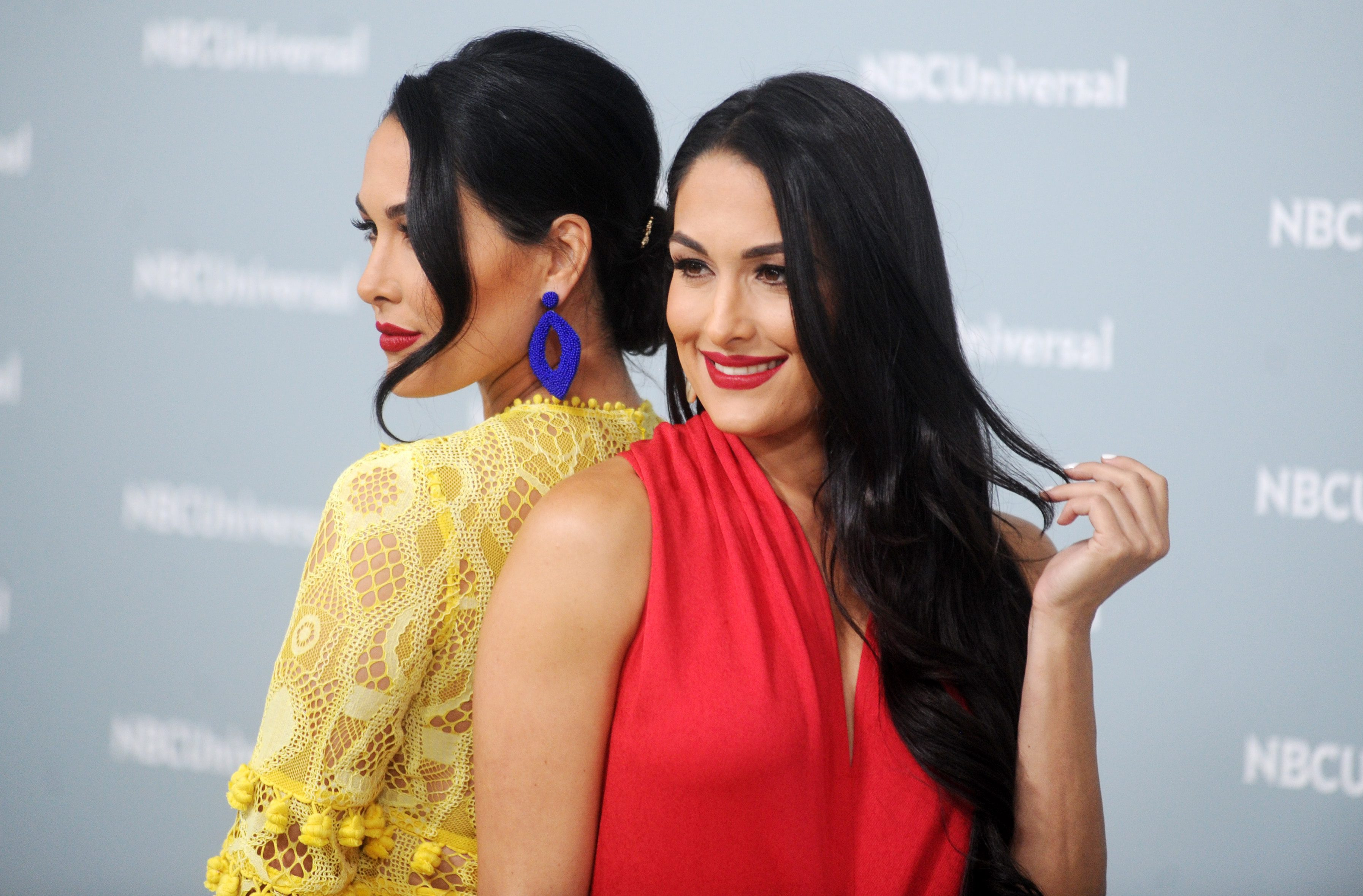 Nikki And Brie Bella Share Stunning Pics From Their Nude Maternity Photoshoot