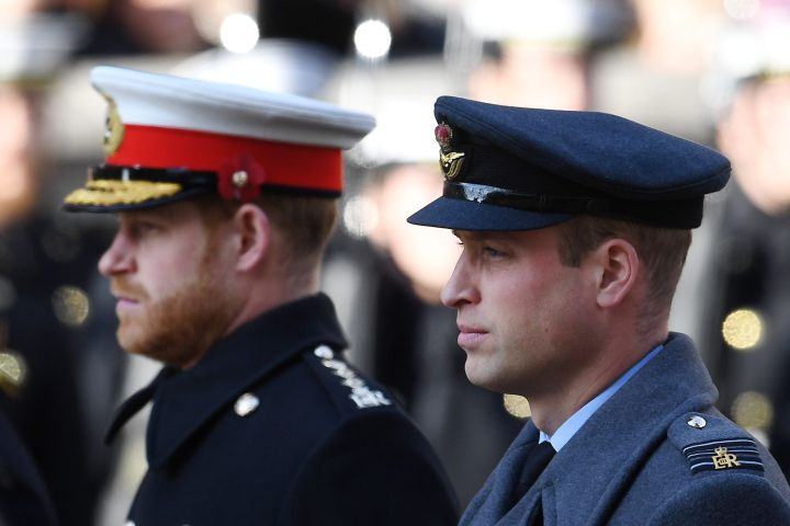Prince Harry and Prince William. Photo: CPImages