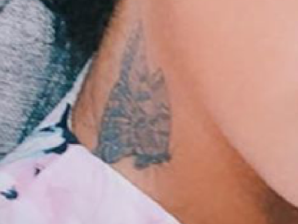 Guess The Tattoo