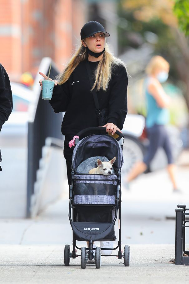 Kaley Cuoco Takes Her Pup For A Stroll