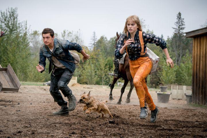 Photo: Murray Close/Lionsgate