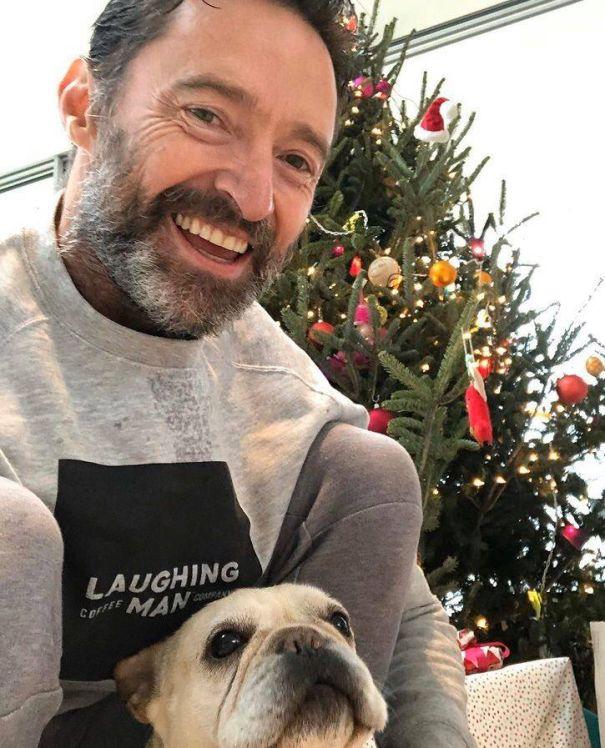 Hugh Jackman's Dog Makes Christmas Cameo
