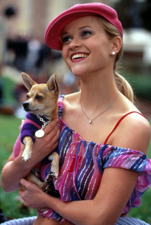 'Legally Blonde' – 20 Years