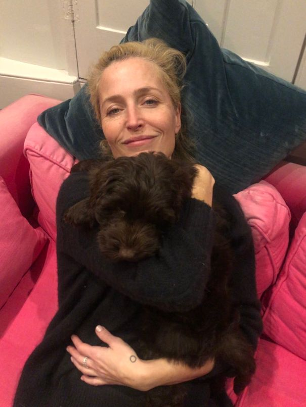 Gillian Anderson Cuddles Up