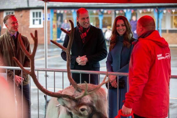 Rent A Reindeer In Berwick-Upon-Tweed