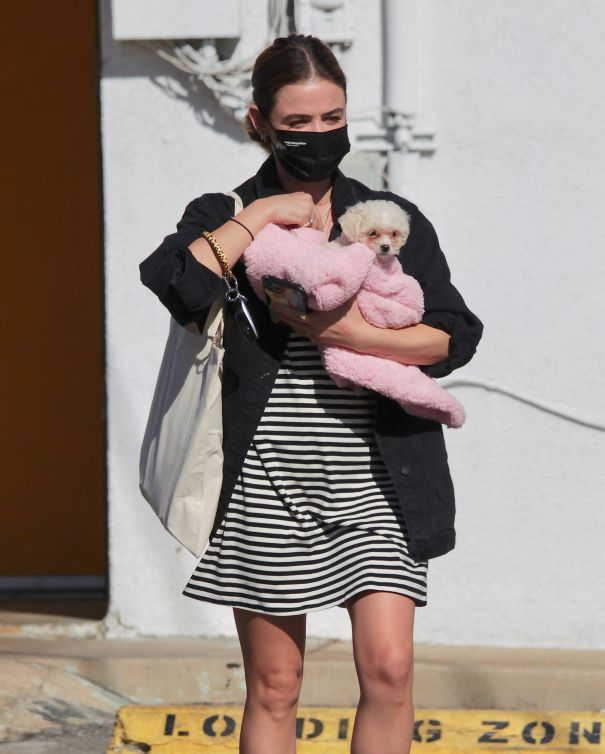 Lucy Hale Adopts New Pup
