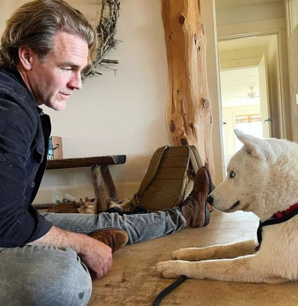 James Van Der Beek And Family Adopt Siberian Husky