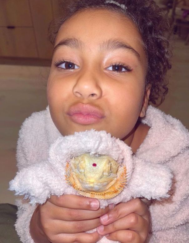 Kim Kardashian Introduces Speed The Bearded Dragon