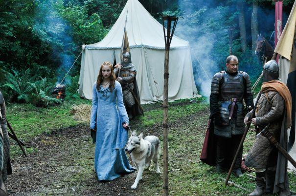 Sophie Turner Adopted Sansa's Direwolf