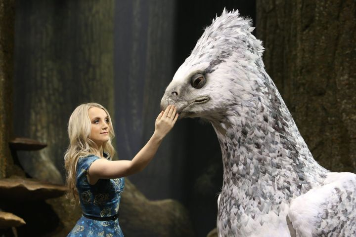 Evanna Lynch with a replica of Buckbeak.
