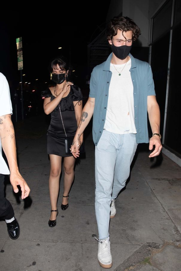 Camila Cabello And Shawn Mendes Hold Hands In Hollywood