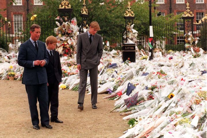 The Prince of Wales and his sons Prince William (right) and Prince Harry, view the sea of floral tributes to Diana, Princess of Wales, at Kensington Palace.