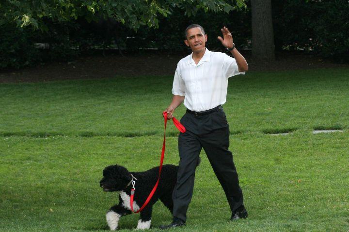 U.S. President Barack Obama walks the first dog Bo
