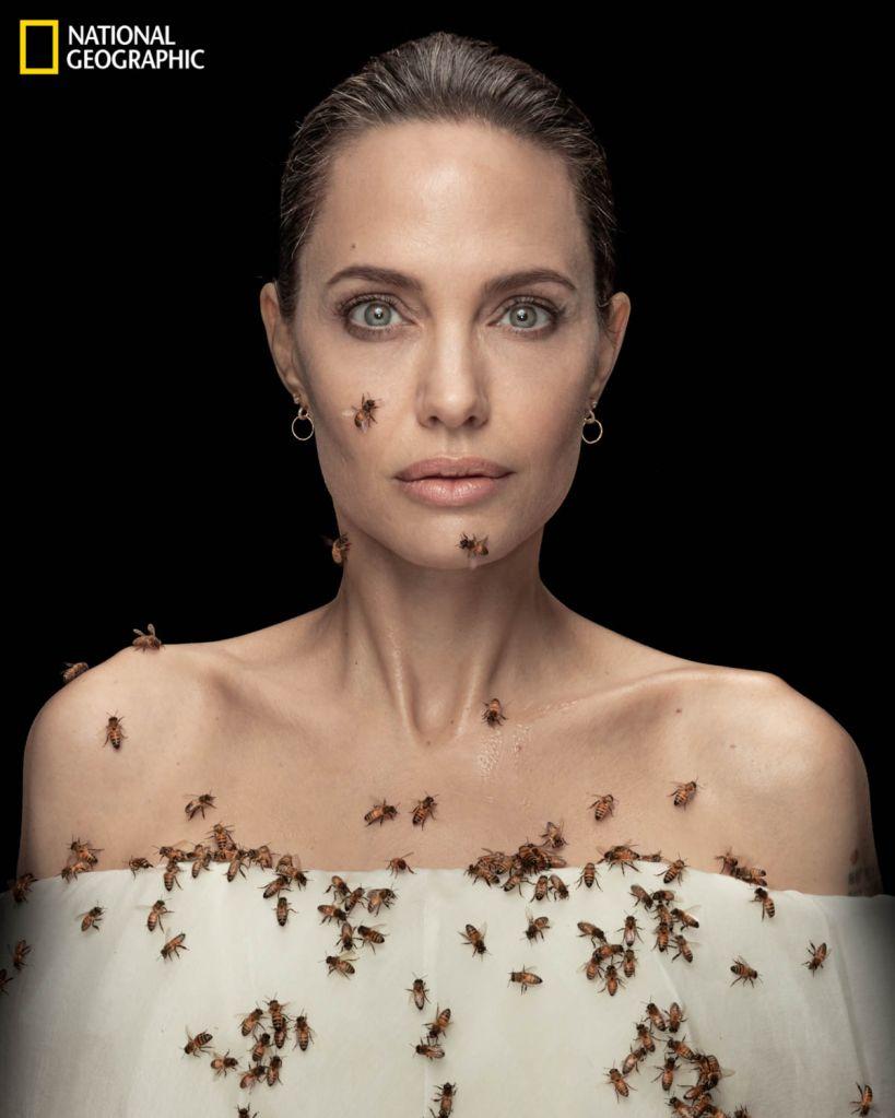 Angelina Jolie. (Dan Winters/National Geographic)