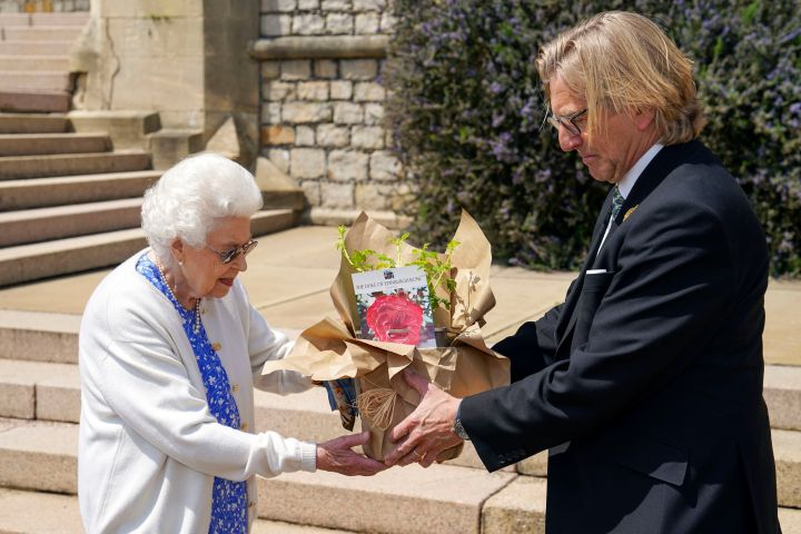 Queen Elizabeth II receives a Duke of Edinburgh rose, given to her by Keith Weed, President of the Royal Horticultural Society, at Windsor Castle, England.