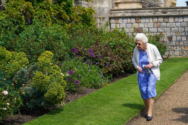 Queen Elizabeth II views the garden border after receiving a Duke of Edinburgh rose, at Windsor Castle, England. (Steve Parsons/Pool via AP/CP Images)