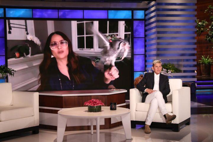 Salma Hayek, Ellen DeGeneres.