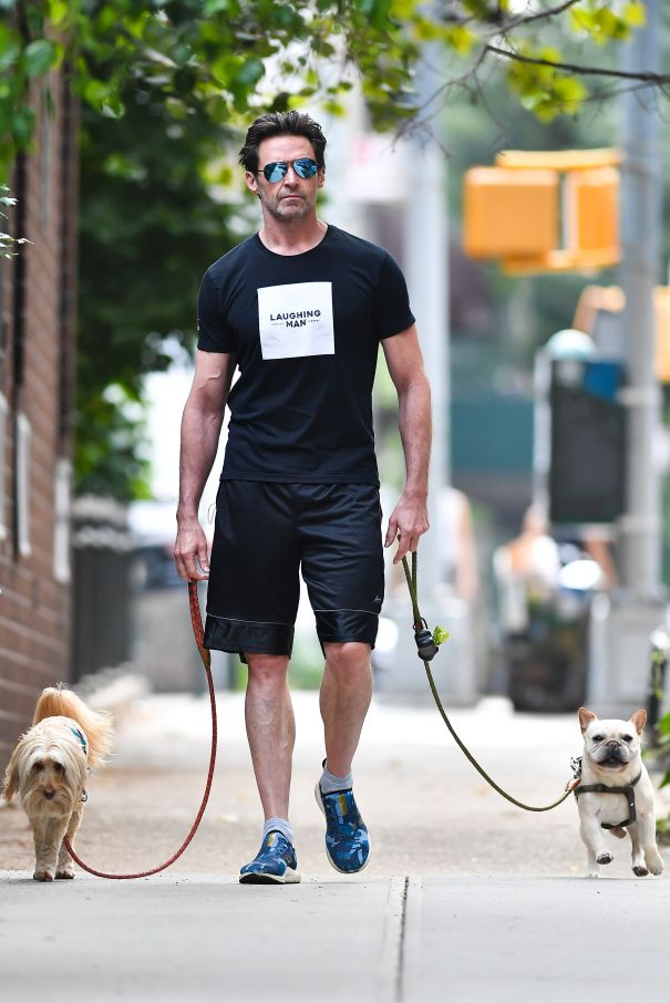Hugh Jackman Takes His Pups For A Stroll