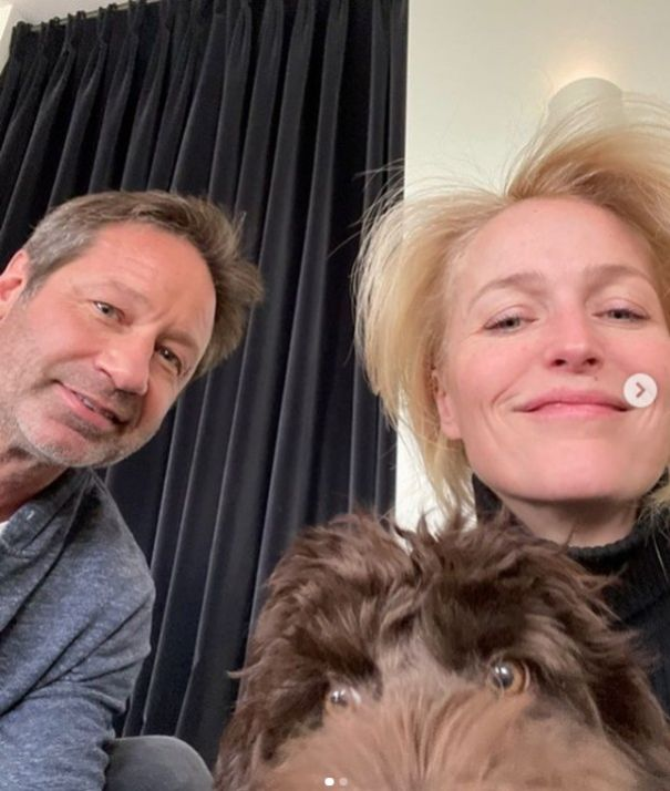 When Her Dog Wished David Duchovny A Happy Birthday